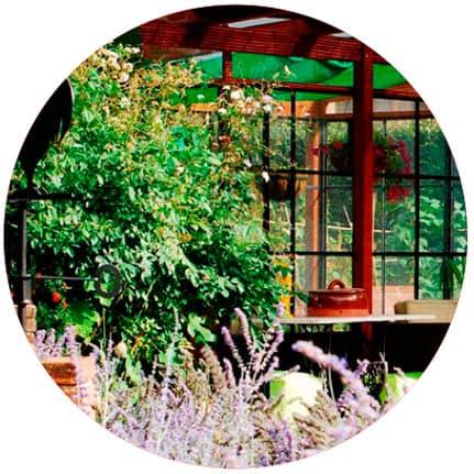 jardineria i paisatgisme botania